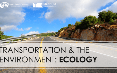 Transportation & the Environment: Ecology
