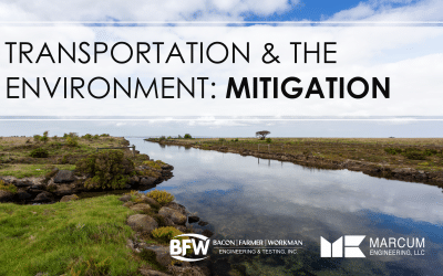 Transportation & the Environment: Mitigation